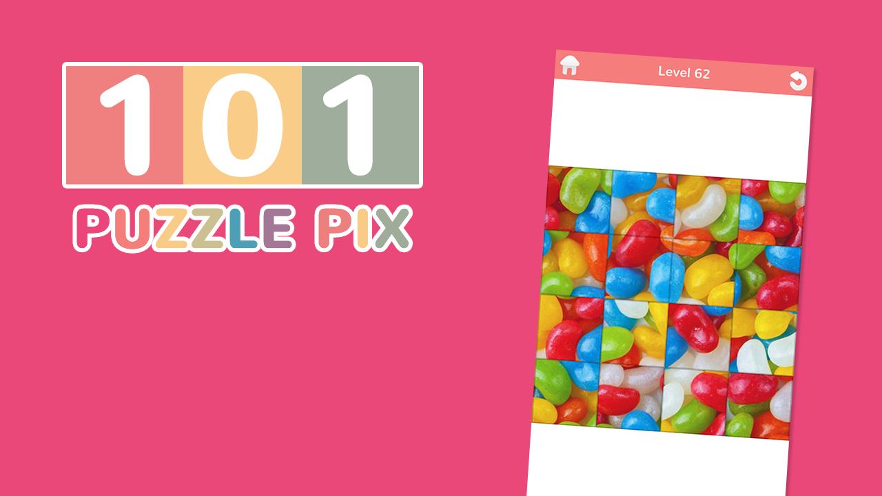 101 Puzzle Pics